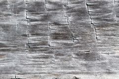 Wood Texture from a Log Cabin Stock Photography