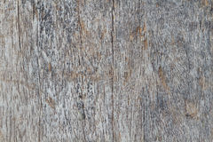 Wood texture of macro. The Wood texture background of macro Royalty Free Stock Photos