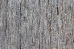 Wood texture of macro. The Wood texture background of macro Royalty Free Stock Images