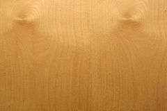 Wood texture - maple Royalty Free Stock Photography