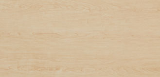 Wood texture - Maple Stock Images