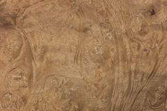 Wood texture-myrtle Royalty Free Stock Photo