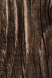 Wood texture neutral gray color background Stock Photo