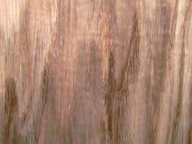 Wood texture. Oak tree sheet surface Stock Photography