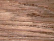 Wood texture. Oak tree sheet surface Stock Images