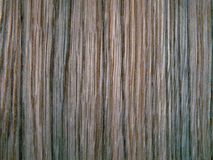 Wood texture. Oak tree sheet surface Royalty Free Stock Images
