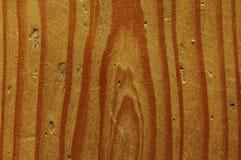 Wood texture Stock Image