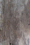 Wood Texture Old. Background Background Royalty Free Stock Photo