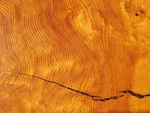 Wood texture. Old wood cut texture with a crack Stock Photography