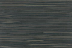 Wood texture Royalty Free Stock Photo