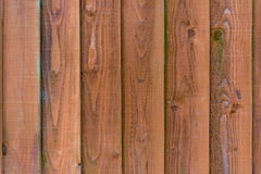 Wood texture. Wood panel background texture.vertical planks royalty free stock images