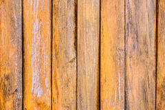 Wood Texture Panel Royalty Free Stock Photography