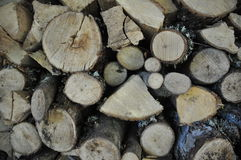 Wood texture. Pile of wood or firewood for texture, background or nature themes Stock Photography