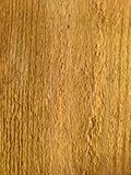 Wood texture. Rough surface of the cut untreated wood Royalty Free Stock Photos
