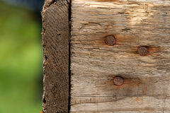 Wood texture with rusty nails Stock Image