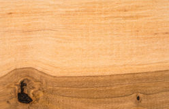 Wood texture. Shot close-up Stock Images