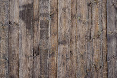 Wood texture. Surface of teak wood background for design and decoration Stock Image
