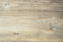 Surface of teak wood Royalty Free Stock Photography
