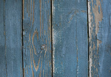 Wood texture. Surface of wood plank background. Wood texture. Surface of blue wood plank background Stock Image