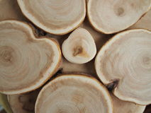 Wood texture. Texture of a tree for background and texture Stock Photo