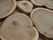 Wood texture. Texture of a tree for background and texture Royalty Free Stock Photo