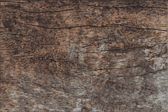 Wood texture vector Royalty Free Stock Image