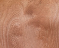 Wood Texture Veneer Abstract Natural Grain Pattern for Backgroun Royalty Free Stock Images