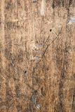 Wood texture very old oak, the rough wood is not uniform Royalty Free Stock Images
