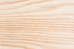 Wood texture wall / floor background, structure of natural untreated wood fibers close-up. Abstract background royalty free stock photo