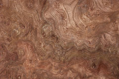 Wood texture-walnut Royalty Free Stock Image