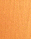 Wood texture well use as background with grainy skin. Earth Tone.  Royalty Free Stock Photography