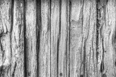 Wood texture, wood background for design. Stock Photos