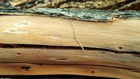 Wood, Texture, Wood Stain, Lumber royalty free stock photography