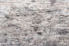 Wood texture. Wood texture for design and decoration. royalty free stock photos