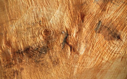 Wood texture. Woodcut background. High resolution photography Stock Images