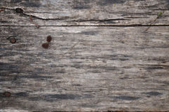 Wood texture. Wooden background. A small knob lies on a wooden board. In the woods. Warm tinting. stock image