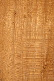 Wood texture. Yellow and brown wooden texture with dots, horizontal and vertical lines, exposed fibers and structure Royalty Free Stock Photos