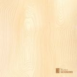 Wood texture. Wood texture for your awesome design. Vector illustration Stock Photography