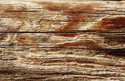 Wood textured background. Close-up full frame dark wood textured background Stock Photography
