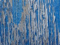 Wood Textured Background - Old Blue Cracked and Peeling Paint. Photography Stock Image
