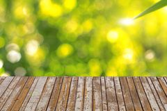 Wood textured backgrounds. See my other works in portfolio Stock Photos