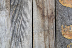 Wood textured  pattern of grunge panels Royalty Free Stock Image