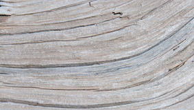 Wood Textures Royalty Free Stock Photos