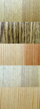 Wood textures. Mixture of textures of different wood patterns and types Royalty Free Stock Images