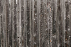 Wood textures. Of nature. Russia Royalty Free Stock Photos