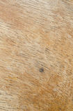 Wood textures Royalty Free Stock Image