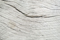 Wood textures Stock Image