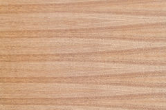wood texturteakträ Arkivbild