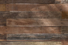 Wood texturtexturbakgrund Royaltyfri Foto