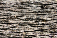 Wood texure backgound Royalty Free Stock Photos